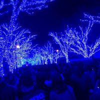 青の洞窟イルミネーション渋谷はフォトジェニックな撮影スポットでした!