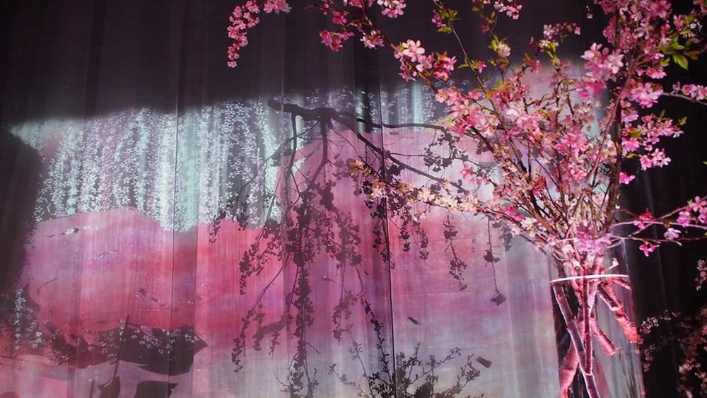 日本一早いお花見「FLOWERS by NAKED」は世界一幻想的なお花見でした。